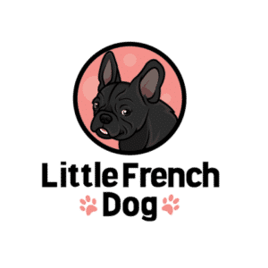 Little French Dog