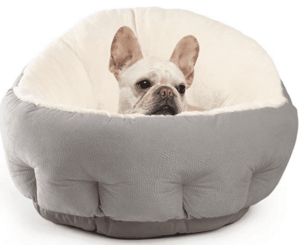 Warm Winter Beds For You French Bulldog cute